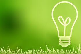 Illustration d'une ampoule avec un filament en forme de jeune pousse d'arbre